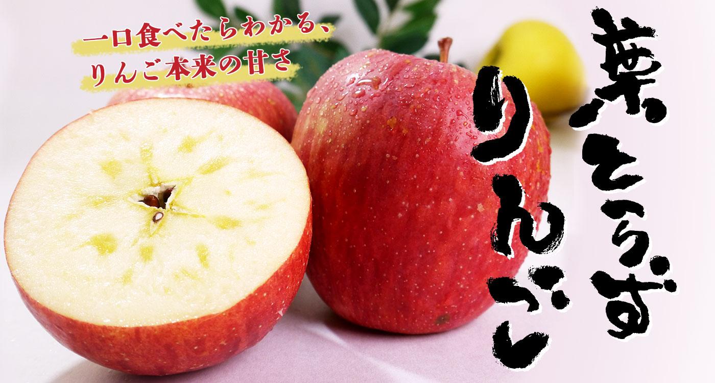 旬の葉とらずりんご